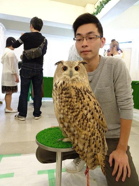 貓頭鷹咖啡館&天麩羅 (37)