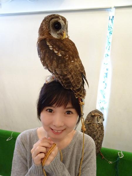 貓頭鷹咖啡館&天麩羅 (39)