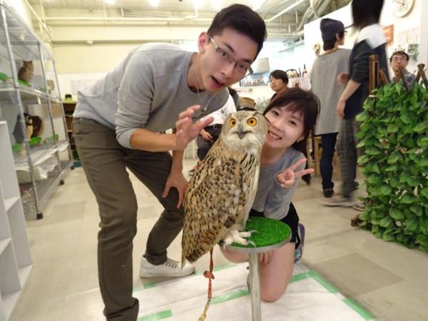 貓頭鷹咖啡館&天麩羅 (45)