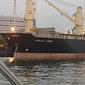 高雄港有各式各樣的貨輪,多到我根本記不住。