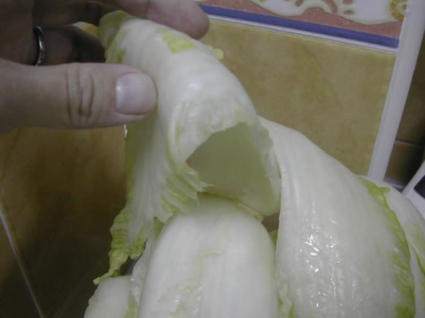 清洗白菜一