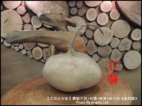DSCN0517-豆薯