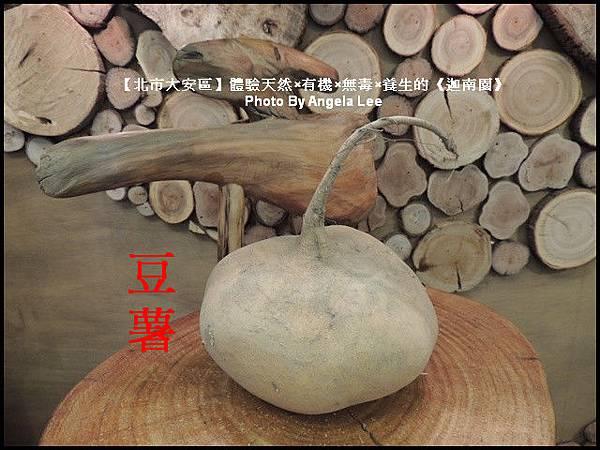 DSCN0518-豆薯