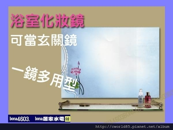 清新荷花浴室化妝鏡玄關鏡 CW-038(無防霧).jpg