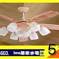 CWL-84083.jpg