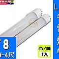 T8 LED燈管1入