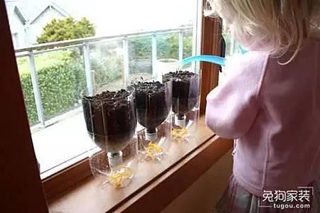 家居創意DIY:自製吸水小盆栽,超實用!6.jpg