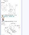 2005/05/06 看鬼片遇鬼