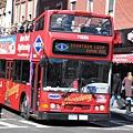 紐約隨處可見的雙層觀光巴士