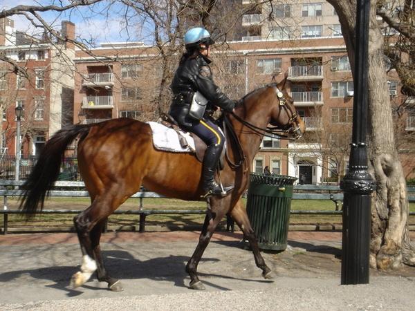 華盛頓廣場上的女騎警