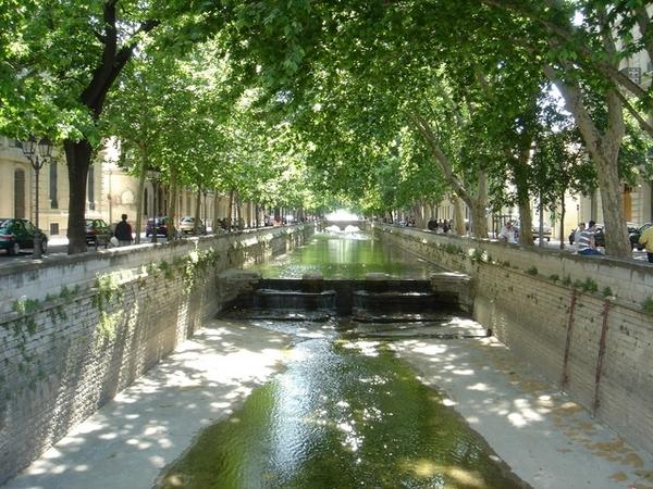 尼姆街頭排水溝的林蔭,一派悠閒