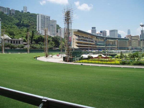 我現在才知道香港是在草皮上賽馬