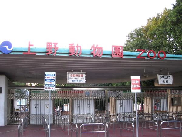 週六去上野動物園玩,這是我第二次來玩