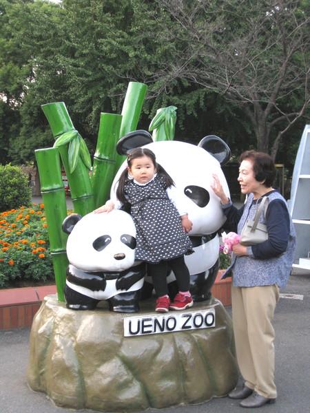 可愛日本妹妹和熊貓合照