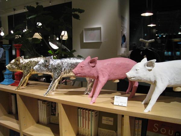 我對家飾精品店裡的小豬愛不釋手