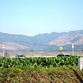 山巒環繞,公路邊立著「熊本縣」的分界柱