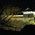 聽說夜間的熊本城比白天的更有味道