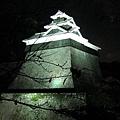 面積達九十八萬平方公尺的熊本城,被堅固的石牆環繞,以「易守難攻」聞名