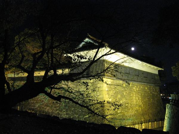 古城在月色和老樹陪襯下,更添神秘