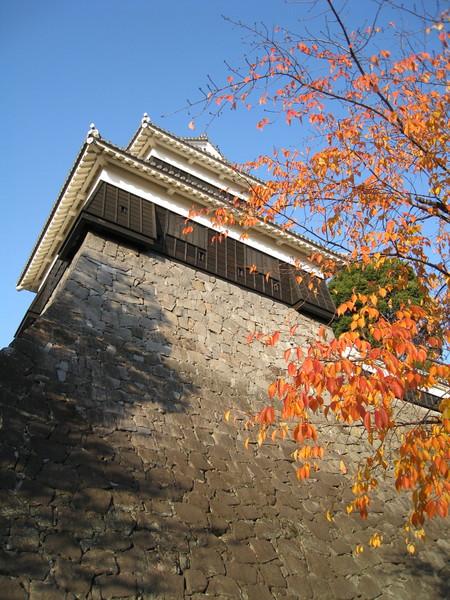 熊本城有很多個不同的「閣」,我也搞不清楚這個叫什麼名字