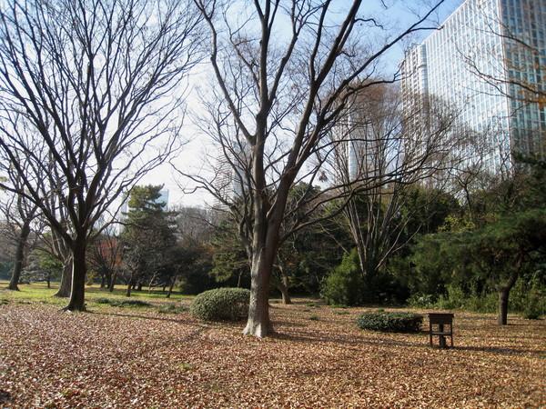 濱離宮是江戶時代建造的代表性庭園