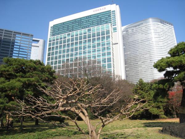 高樓大廈環繞著占地24萬7500平方米的綠地