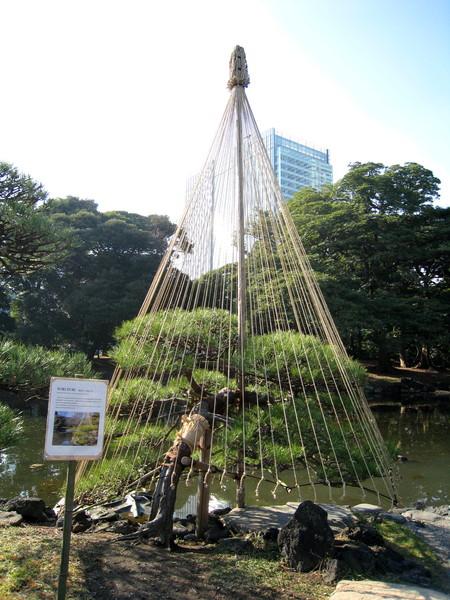一直疑惑這些繩索是不是日本特有的創意聖誕樹,但真相只有一個....