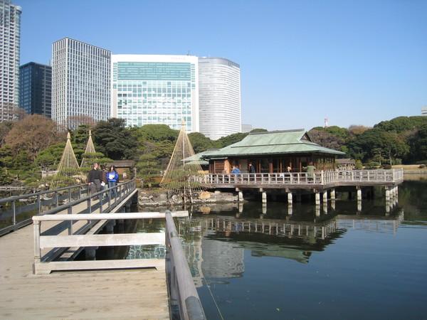 在傳統日式庭園的中島茶屋喝茶,曬曬冬日暖陽,應該是件浪漫的事