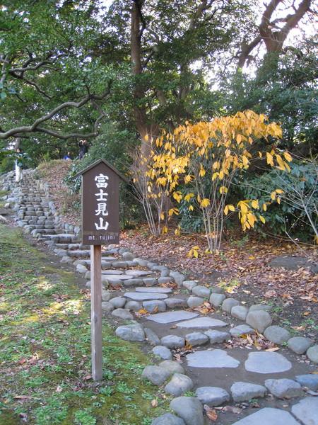 庭園內有座叫富士山的小山丘
