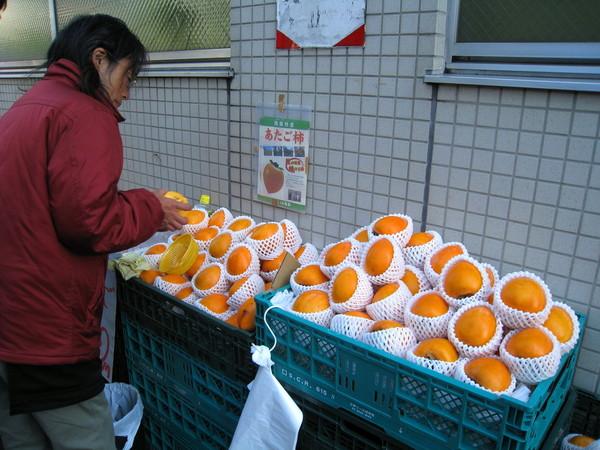 發現電車站入口旁有人擺攤賣柿子