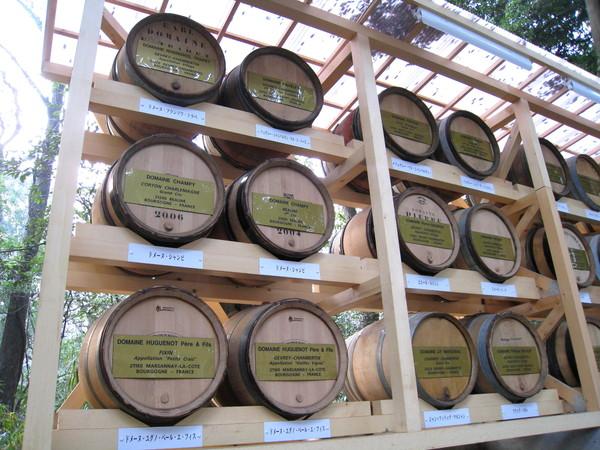 這些酒是由葡萄酒同業公會奉獻給明治神宮