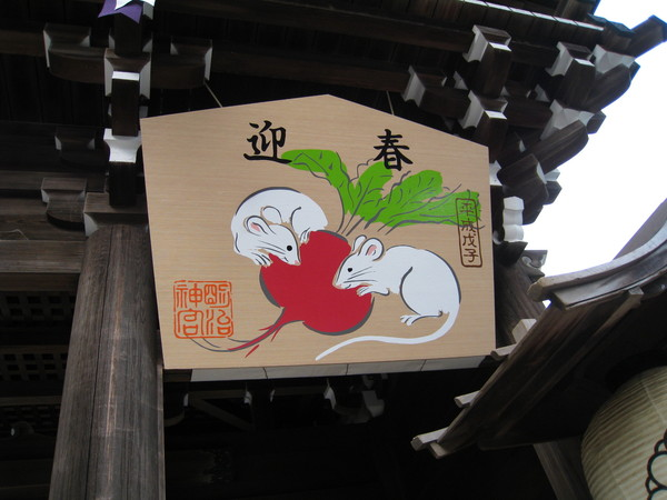 兩隻小白鼠啃菜頭,難道日本也有好彩頭的說法嗎?