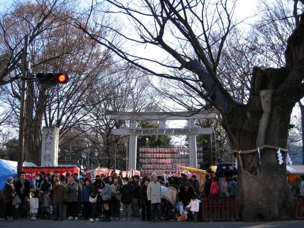 大年初二,終於造訪了東京都府中市最大的神社:「大國魂神社」