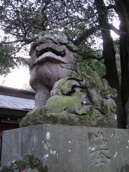 神社門口的石獅子