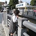 小妹妹專注地靠在河堤欄杆邊看鯉魚