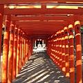 一成串橘色的鳥居,讓我想起曾在紐約中央公園展出的裝置藝術「The Gates」