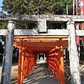 鳥居大小一般和神社規模成正比,所以稻荷神社的鳥居也小得很可愛