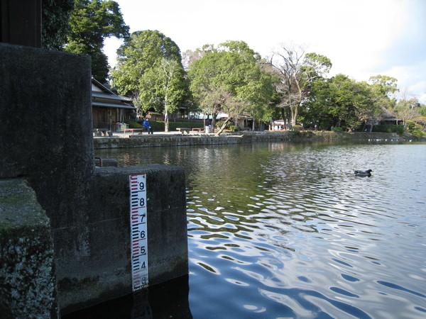 池邊的水位刻度