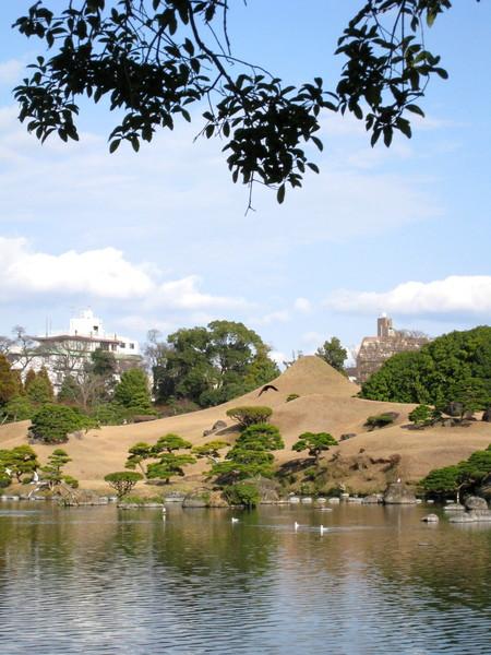 聽說這座小山丘,是仿造富士山建的