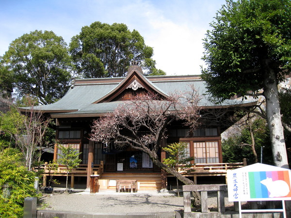 熊本大神宮應該也是座神社,但不見參拜信眾