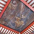 淨手池天花板上的金龍壁畫,日本龍只有三隻爪