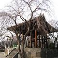東京最著名的「除夕之鐘」就在這裡響起
