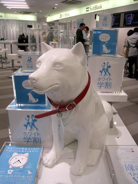 因為看到Softbank廣告裡的狗爸爸,進去要求拍照,女店員笑昏了