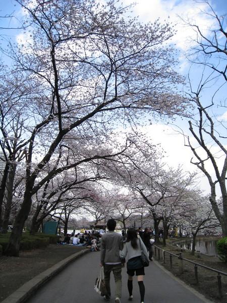 這樣散步好浪漫,天氣要是再晴朗一點就更完美