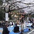 在櫻花樹下飲酒作樂的歡樂場景