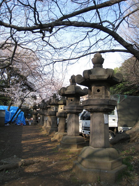 上野東照宮最有明的就是大大小小的石燈籠