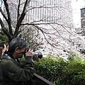 拿專業單眼相機拍照以歐吉桑居多,年輕人愛用照相手機