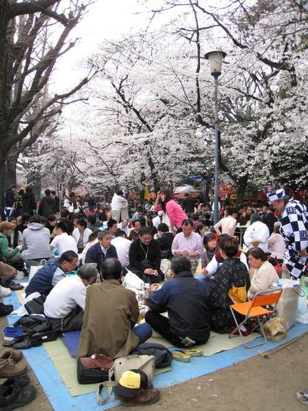 靖國神社的參拜道兩側,成了活動市集和野餐聖地