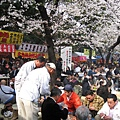 靖國神社的賞櫻場地略嫌狹小,熱鬧非常