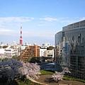 森大樓上遠眺東京鐵塔、朝日電視台、毛利庭園